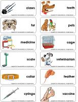 Word flashcards - Veterinarians