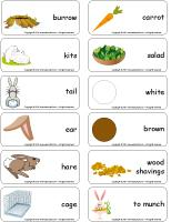 Word-flashcards-Rabbits
