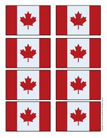 Canadian flag-small