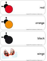 Giant word flashcards-Ladybugs