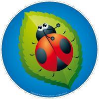 My ladybug-path