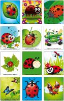 Picture game-Ladybugs