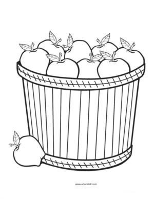 Apples - Coloring book