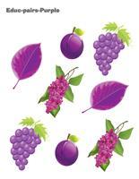Educ-pairs-Purple