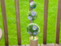 Decorative topiary-1