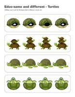 Educ-same and different-Turtles