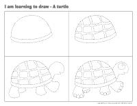 I am learning to draw-A turtle
