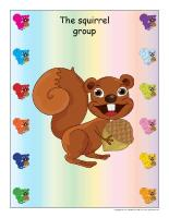 Group identification-Squirrels