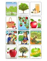 Picture game-The apple orchard