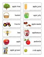 Word flashcards-The apple orchard
