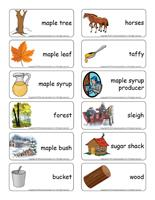 Word flashcards-Sugar shack