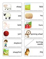 Word flashcards-Sheep