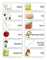 Word flashcards-Sheep