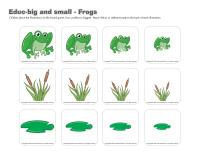 Educ-big and small-Frogs