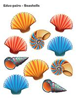 Educ-pairs-Seashells