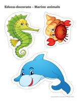 Educa-decorate-Marine animals
