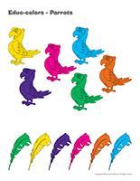 Educ-colors-Parrots