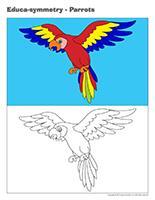Educa-symmetry-Parrots