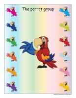 Group identification-Parrots