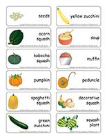 Word flashcards-Squash