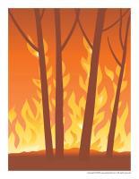 Scene-Fire
