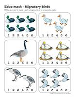 Educ-math-Migratory birds