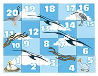 Snakes and ladders-Migratory birds