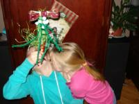 My mistletoe-8