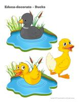 Educa-decorate-Ducks