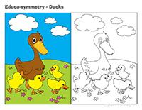 Educa-symmetry-Ducks