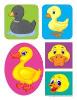 Stickers-Ducks