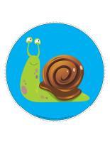 My snail path