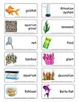 Word flashcards-Aquariums