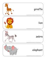 Giant word flashcards-Safari