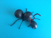 Inflated ant-1