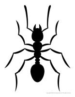 Models-Ants