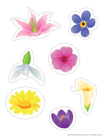 Models-Flowers