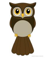 Models-Owls