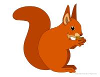 Models-Squirrels