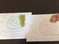 One snail, five activities-4