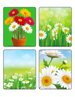 Picture game-Daisies-2