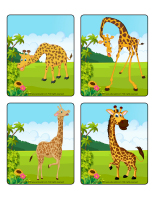 Picture game-Giraffes-1
