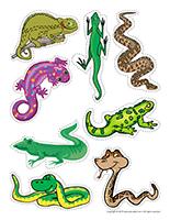Reptile-hunt