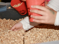 Sensory bin surprises used for arts & crafts-14