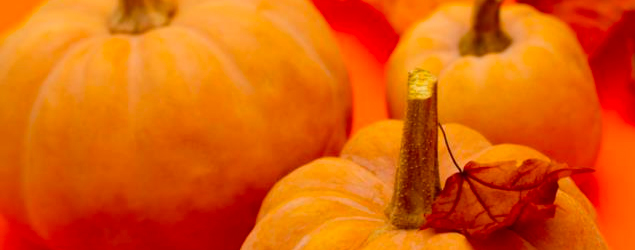 Shiny pumpkin place card