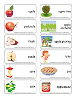 Word flashcards-Apples