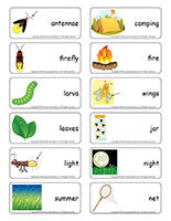 Word-flashcards-Fireflies