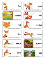 Word flashcards-Foxes