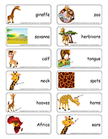 Word flashcards-Giraffes