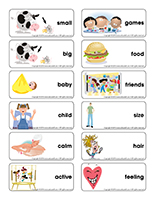 Word flashcards-Personalities